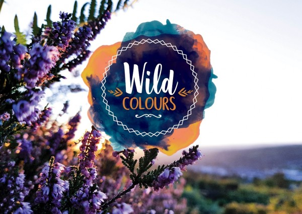 18/1 Plakat - Wild colours