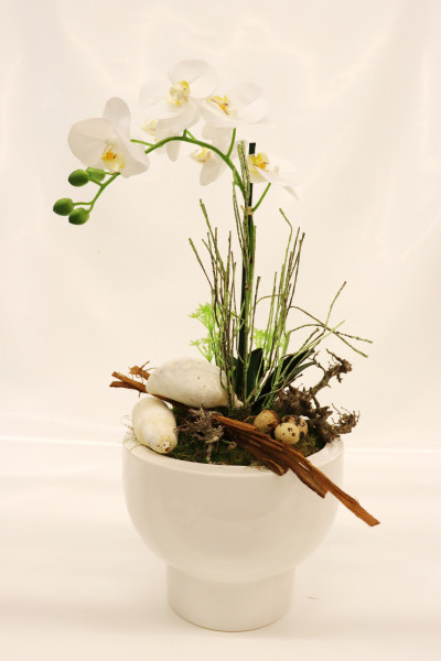 Gefäß mit Phalaenopsis weiß-grün Ø45cm H62cm